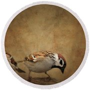 Two Sparrows Round Beach Towel