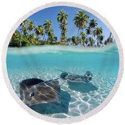 Two Stingrays 1 Round Beach Towel