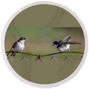 Two Swallows Round Beach Towel