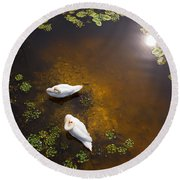Two Swans With Sun Reflection On Shallow Water Round Beach Towel