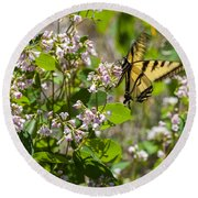 Two Tailed Swallowtail Round Beach Towel