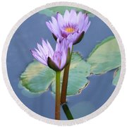 Two Tall Water Lilies Round Beach Towel