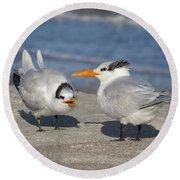 Two Terns Talking Round Beach Towel