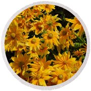Two Toned Yellow Blooms Round Beach Towel