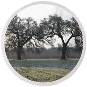 Two Tree Frosty Morning Round Beach Towel