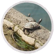 Two Turtles Round Beach Towel