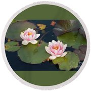 Two Water Lillies Round Beach Towel