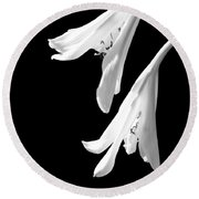 Two White Lilies Round Beach Towel