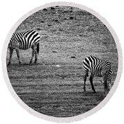 Two Zebras Eating. Tanzania Round Beach Towel