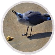 Tybee Seagull Round Beach Towel
