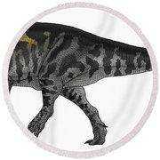 Tyrannosaurus Rex, A Large Predator Round Beach Towel