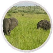 Ugandan Elephants Round Beach Towel