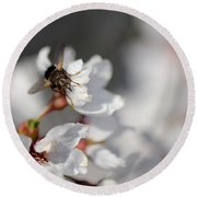 Ugly Pollinator Round Beach Towel