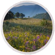 Umbria Wildflowers Round Beach Towel