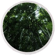 Under The Bamboo Haleakala National Park  Round Beach Towel