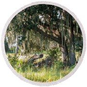 Under The Live Oak Tree Round Beach Towel