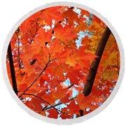 Under The Orange Maple Tree Round Beach Towel by Rona Black