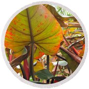 Under The Tropical Leaves Round Beach Towel