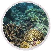 Underwater Color Round Beach Towel