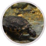 Underwater Turtle Round Beach Towel