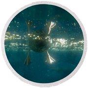 Underwater View Of Duck's Webbed Feet Round Beach Towel