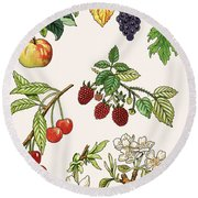 Unidentified Montage Of Fruit Round Beach Towel