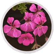 Pink Geranium Flower Round Beach Towel