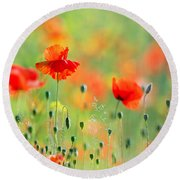 Untited Colours Of Summer  Round Beach Towel