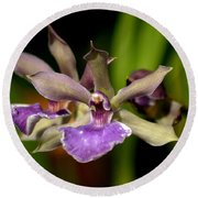 Unusual Orchid Round Beach Towel