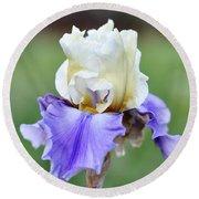 Up Close Elegant Iris Round Beach Towel