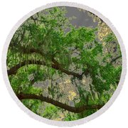 Up Through The Haunted Tree Round Beach Towel