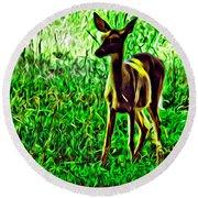 Valley Forge Deer Round Beach Towel