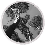 Valley Of The Giant Tingles Bw Round Beach Towel