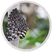 Variable Cracker Butterfly Round Beach Towel