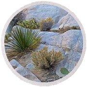 Varied Desert Flora Along Barker Dam Trail In Joshua Tree Np-ca Round Beach Towel