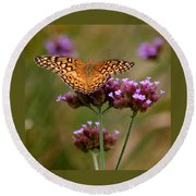 Variegated Fritillary Butterfly Square Round Beach Towel