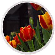 Variegated Tulips Round Beach Towel