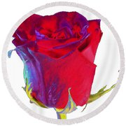 Velvet Rose Bud 2 Round Beach Towel
