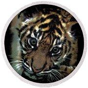 Velvet Tiger Cub Round Beach Towel