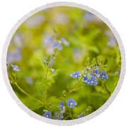 Veronica Chamaedrys Named Speedwell Or Gypsyweed Round Beach Towel