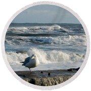 Seagull In Winter Round Beach Towel
