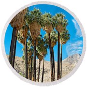 Very Tall Fan Palms In Andreas Canyon In Indian Canyons-ca Round Beach Towel