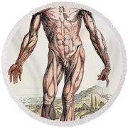 Vesalius: Muscles 01 Round Beach Towel