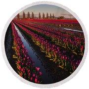 Vibrant Dusk Tulips Round Beach Towel