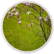 Vibrant Pink Magnolia Blossoms Round Beach Towel