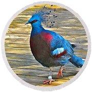 Victoria Crowned Pigeon In San Diego Zoo Safari In Escondido-california Round Beach Towel