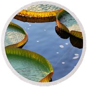 Victoria Waterlilies Round Beach Towel