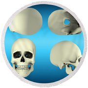 View Of Human Skull From Different Round Beach Towel