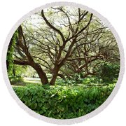 Vines And Oaks Round Beach Towel