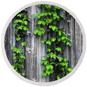 Vines On The Side Of A Barn Round Beach Towel